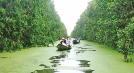 CAN THO- SA DEC- VIET MEKONG FARMSTAY- CHAU DOC (3 DAYS 2 NIGHTS)- MEKONG ECO TOUR